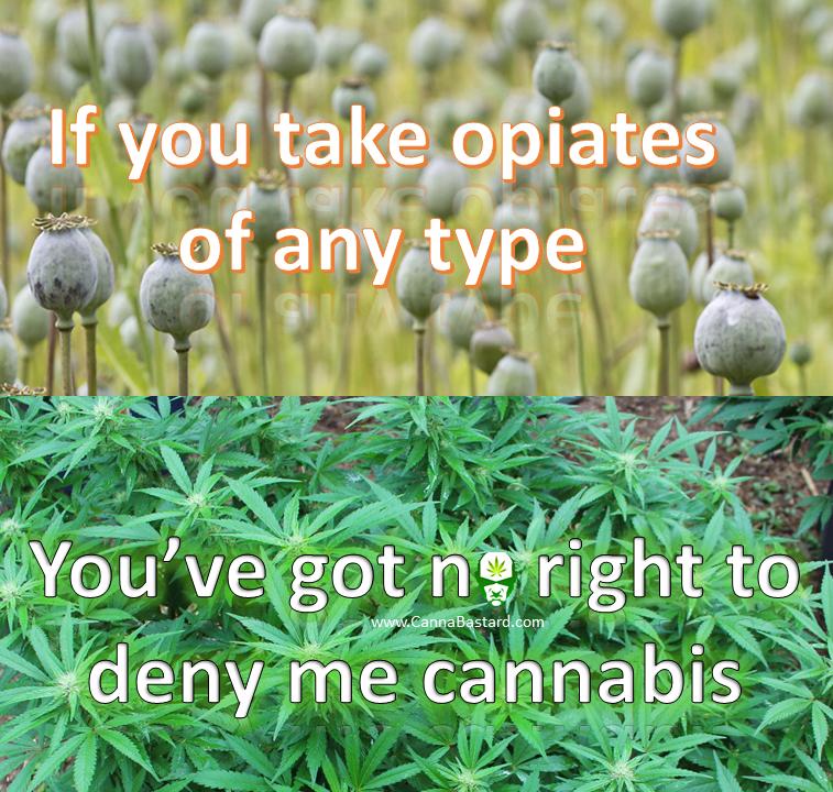 cannabastard-opiates-meme