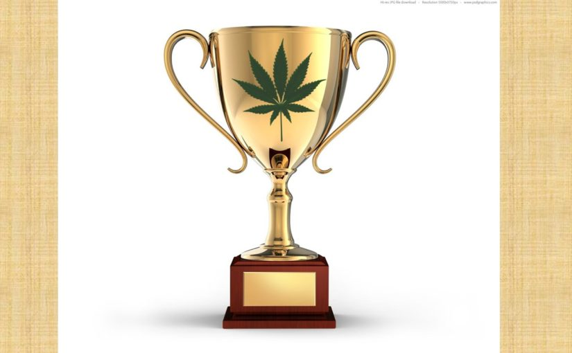 Why I Judge Cannabis Competition Judging