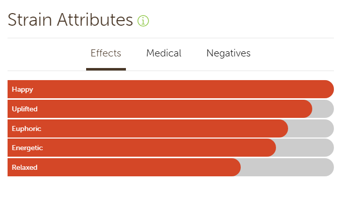 Conflicting Effects of Amnesia Haze on Leafly