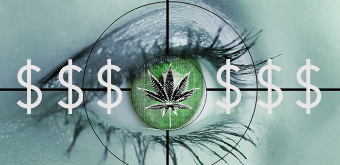 SHOCKING: Cannabis Consultant Charges Money for Services, Advice